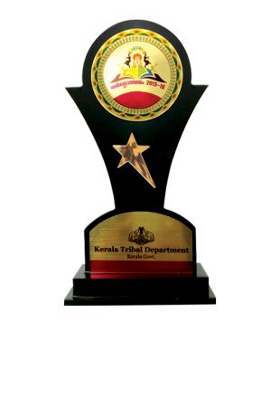 Elegant Wooden Award for Govt Bodies and Organizations