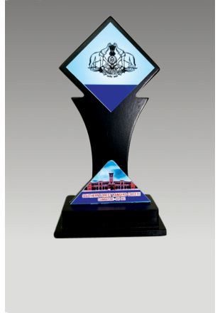 Personalized Wooden Award for Private Institutes and Organizations