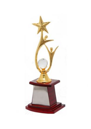 Shiny Star Sculpture Trophy for Achievers