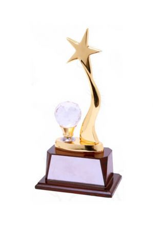 Crystal Star Illumination Award