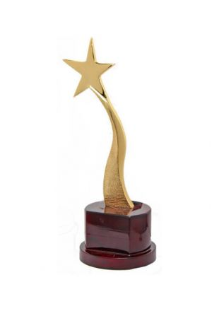 The Shinning Star Award for Top Achievers